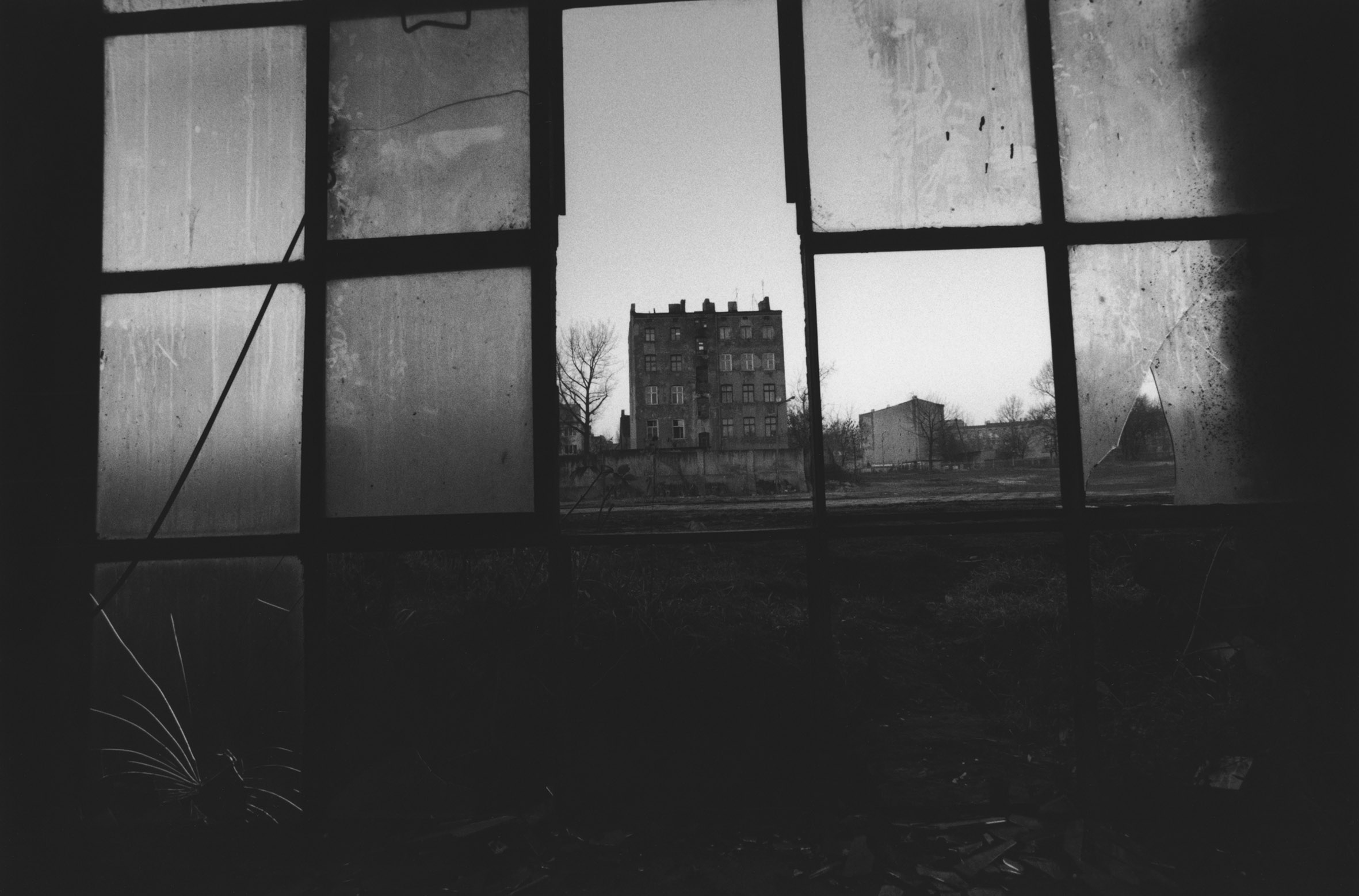 04_PressImage l David Lynch, Untitled (Lodz), 2000_1