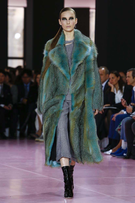 Dior RTW Fall Winter 2015 Fashion show in Paris