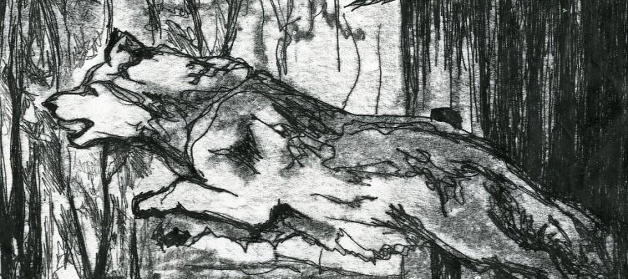 Sulle orme del cane bianco-Carelia di Viena