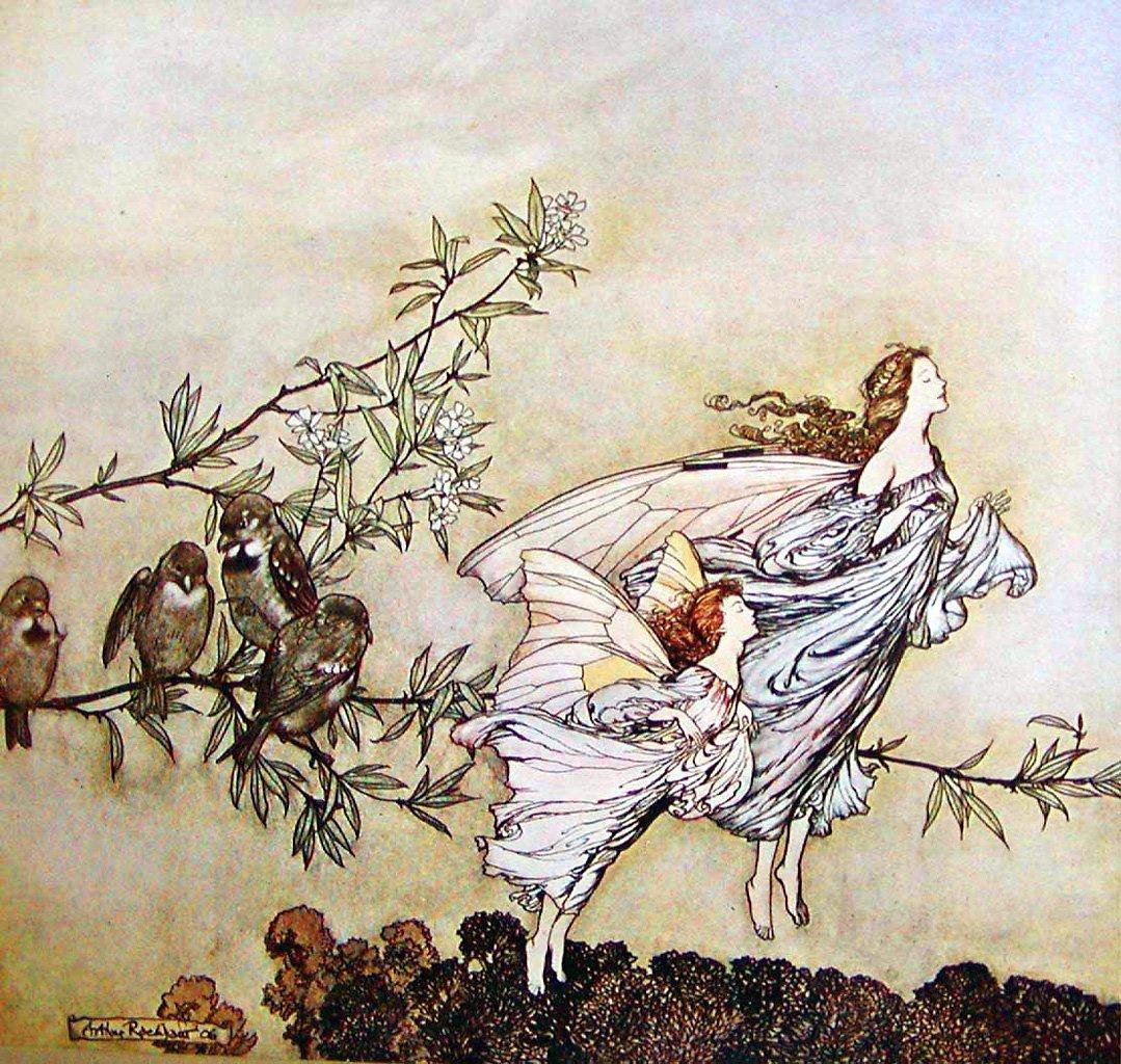 5-fairy by Arthur Rackham