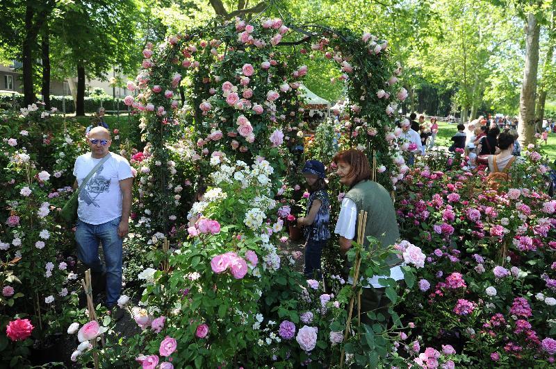 8 festival da non perdere a bologna! - fashion beginners - Giardini E Terrazzi Garden Show Mostra Mercato