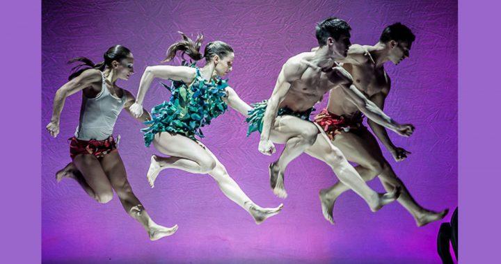 Kataklò, la compagnia indipendente di danza a Bologna