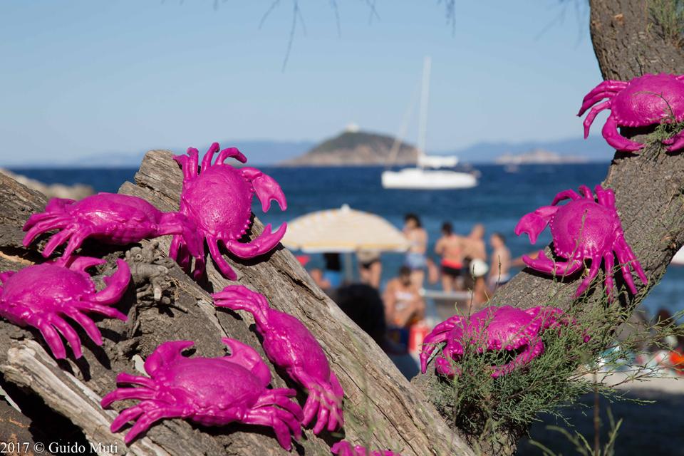 Cracking Art all'Isola d'Elba