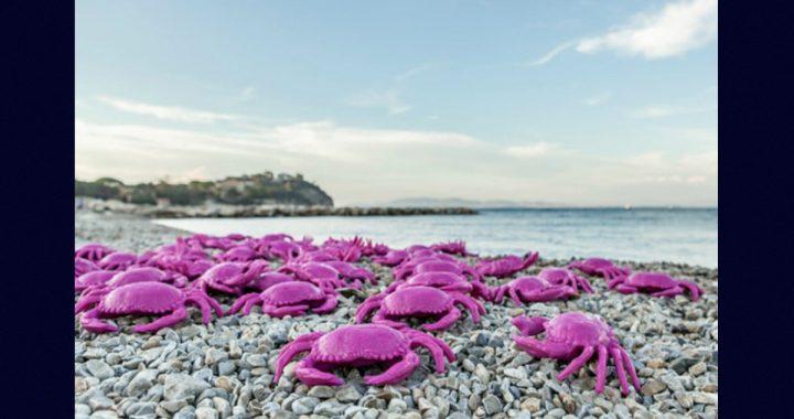 Cracking Art all'Isola d'Elba, una iniziativa locale con il collettivo